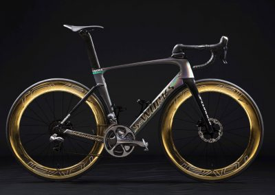 ROVAL GOLD – Peter Sagan Venge Vias Disc